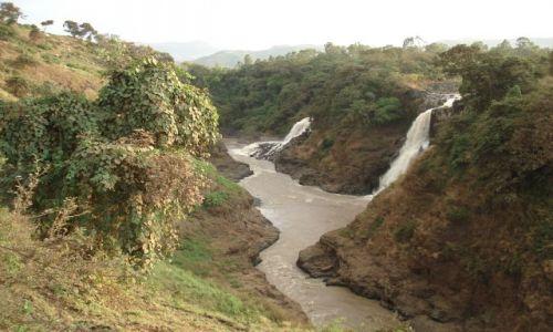 Zdjęcie ETIOPIA / Amhara / okolice Bahar Dar / Tis Issat / Dolina Nilu
