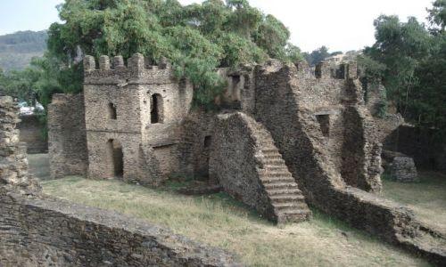 Zdjęcie ETIOPIA / Amhara / Gonder / Mury Gonderu