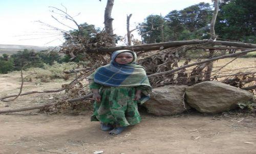 Zdjecie ETIOPIA / Amhara / trasa Sankaber - Debark/ Simien / Portret
