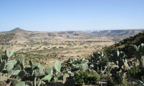 Zdjecie ETIOPIA / Tigray / droga Aksum - Mekele / Krajobraz z ambami