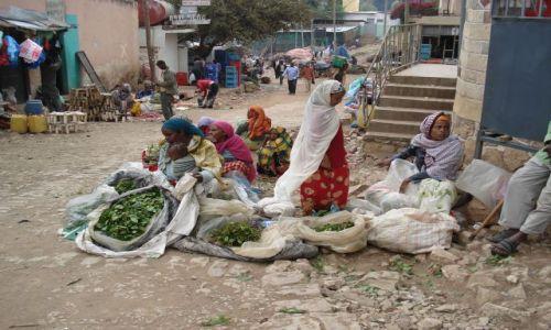 Zdjecie ETIOPIA / Harari / Harar / Sprzedaż czatu (qatu, kata)