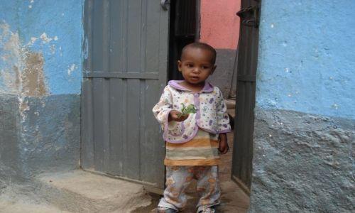 Zdjęcie ETIOPIA / Harari / Harar / Brak zainteresowania ....
