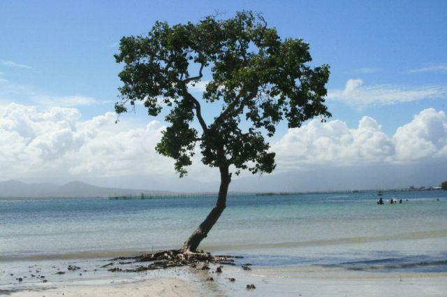 Zdjęcia: Wyspa Palawan, Biała Plaża w Puerto Princessa, FILIPINY