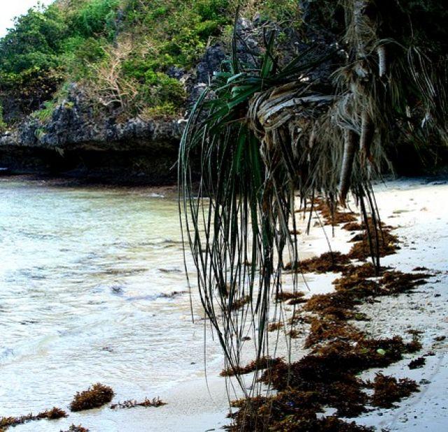 Zdjęcia: Sto Wyso koło Alaminos, Sto Wysp, FILIPINY