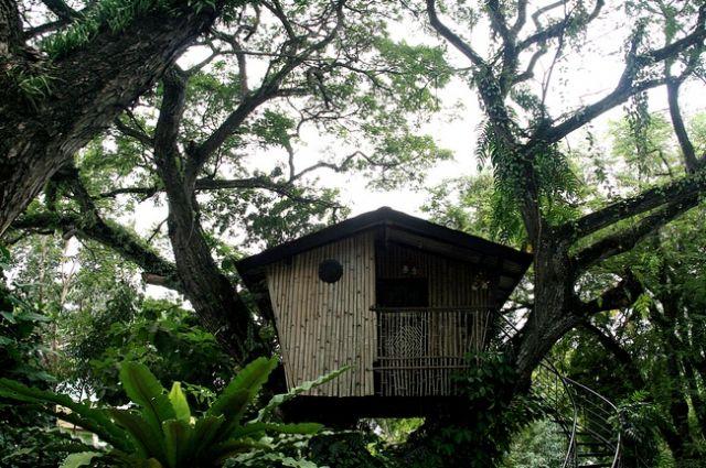 Zdjęcia: Zamboanga/Mindanao, Domek na Drzewie, FILIPINY