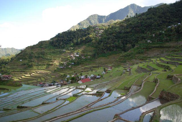 Zdjęcia: Batad, Illocos, wioska Batad, FILIPINY