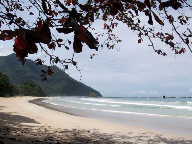 Zdjęcia: Sabang i okolice, Palawan, ... spadający liść ..., FILIPINY