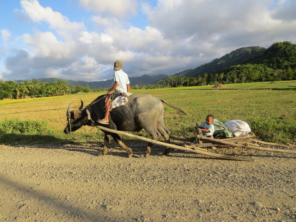 Zdjęcia: El Nido, Palawan, Tubylcy spotkani na drodze na wyspie Palawan, FILIPINY