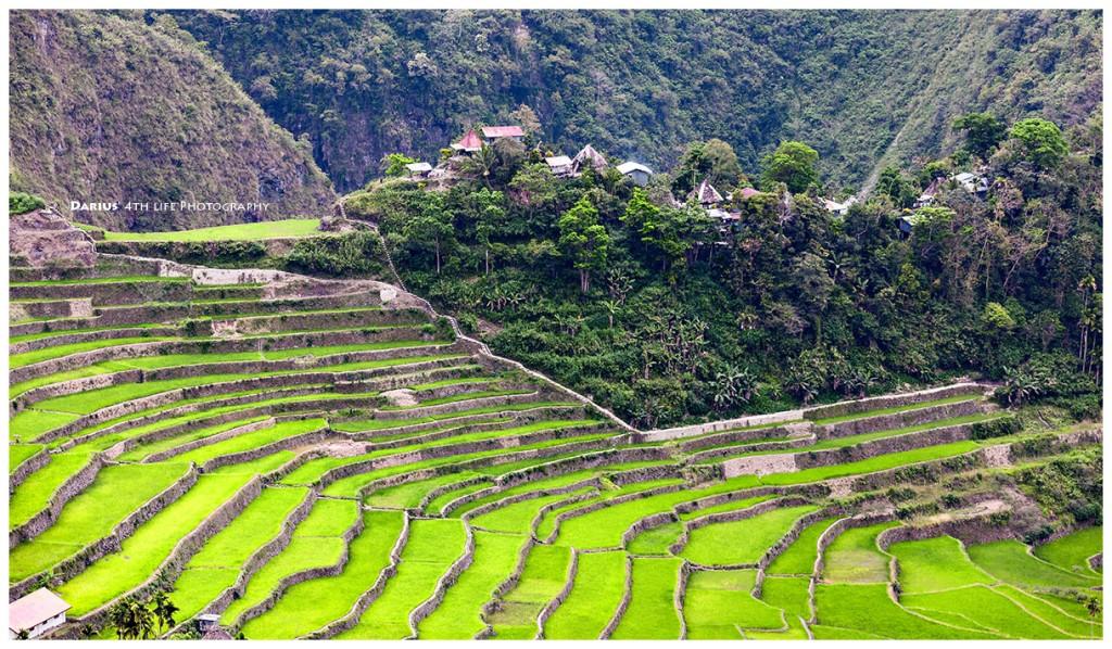 Zdjęcia: Batad, Luzon, Inbetween the fields, FILIPINY