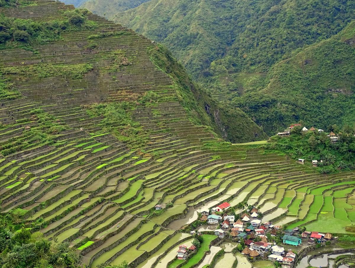 Zdjęcia: Batad, Północny Luzon, Góra ujarzmiona, FILIPINY