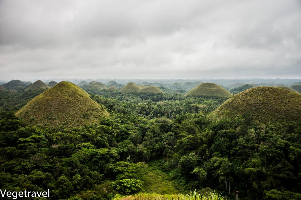 Zdjęcia: Chocolate hills, Bohol, Czekoladowe wzgórza, FILIPINY