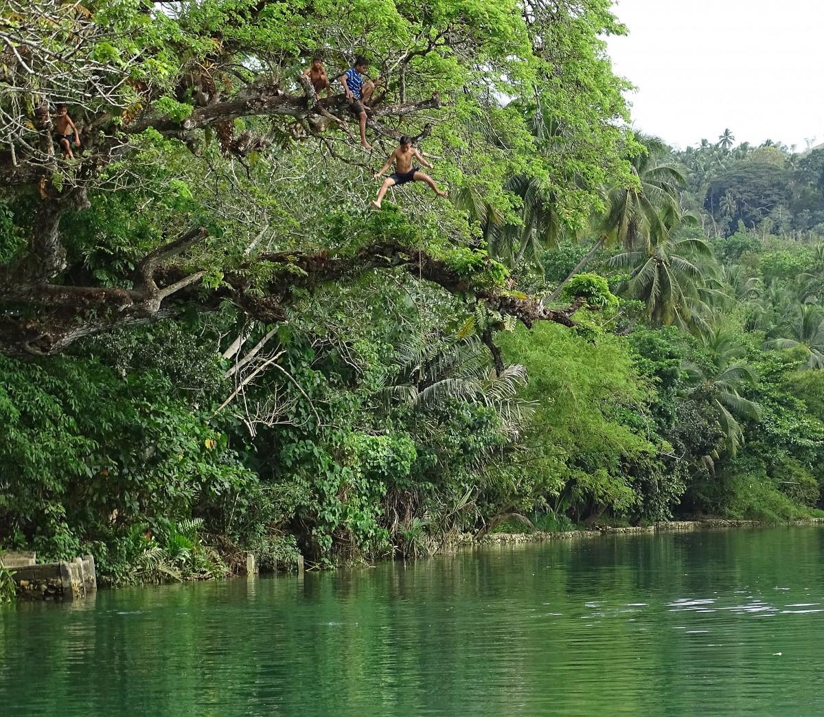 Zdjęcia: Bohol, wyspa Bohol, Z zieloności w zieloną toń, FILIPINY
