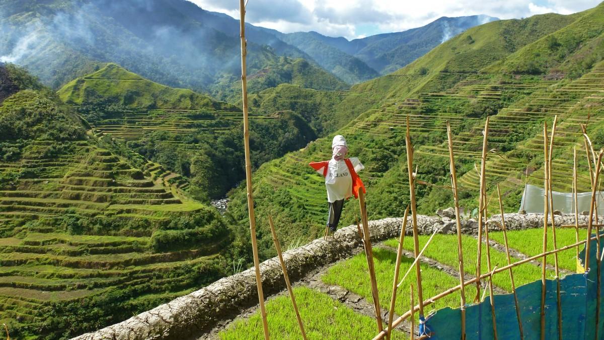 Zdjęcia: Banaue, Ifugao, Tarasy ryżowe Banaue, FILIPINY