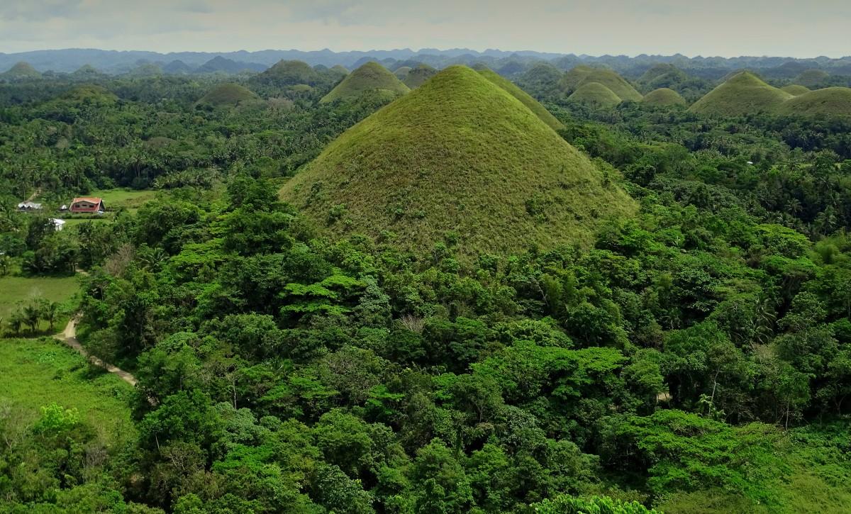 Zdjęcia: Chocolate Hills, wyspa Bohol, W soczystej zieleni, FILIPINY