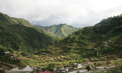 Zdjęcie FILIPINY / Banaue / Batad / Tarasy w Batad