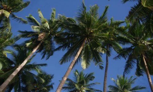 Zdjecie FILIPINY / Palawan / El Nido, Corong Corong / Las Palmas