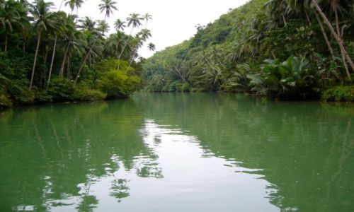 Zdjecie FILIPINY / - / LOBOK RIVER / BOHOL-PANGLAO