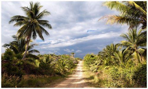 Zdjecie FILIPINY / Palawan / Palawan / Very South Palawan Highway