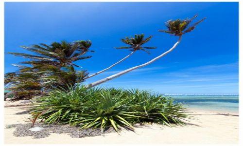Zdjęcie FILIPINY / Cuyo Island / Magsaysay / Dreamy Beach