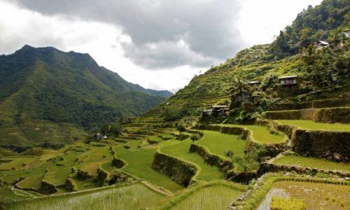 Zdjęcie FILIPINY / Ifugao na wyspie Luzon  / Banaue / Ale w koło jest zielono