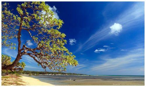 Zdjecie FILIPINY / Cuyo Island / Cuyo / Deep Blue Sky
