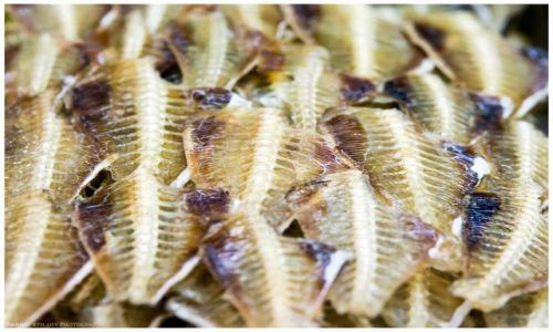 Zdjęcie FILIPINY / Panay / Iloilo / Dried Fish