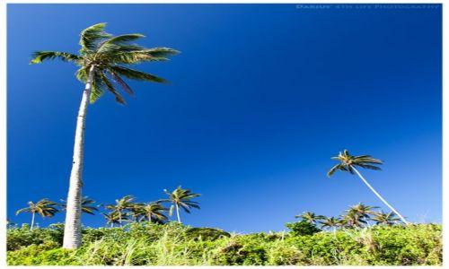Zdjęcie FILIPINY / Mindanao / Camiguin / Into the wind