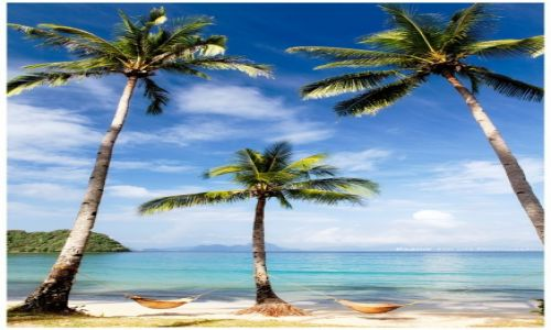Zdjecie FILIPINY / Palawan / Bacuit Archipelago / A place for two
