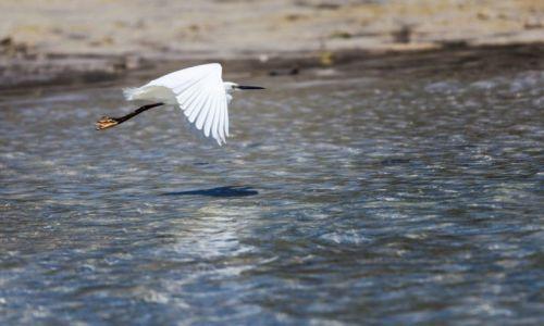 Zdjęcie FILIPINY / Bantayan / Santa Fe / Flying
