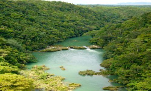 Zdjecie FILIPINY / Bohol / LOBOC RIVER / Loboc