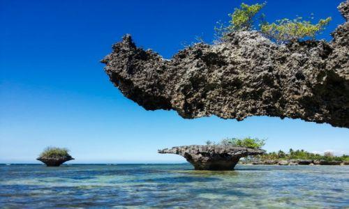 Zdjęcie FILIPINY / Cebu / Moalboal / Mushroom Rocks