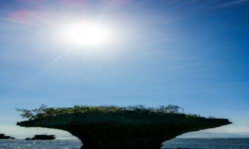 Zdjęcie FILIPINY / Cebu / Moalboal / Sun