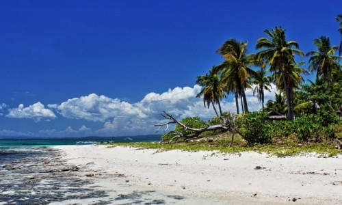 Zdjęcie FILIPINY / Kalanggaman Island / Kalanggaman Island / Kalanggaman Island