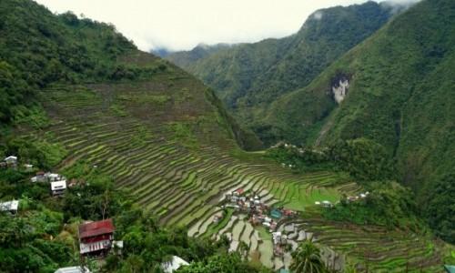 Zdjecie FILIPINY / Północny Luzon / ponad wioską Batad / Tarasy ryżowe w Batad