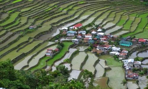 FILIPINY / Północny Luzon / wioska Batad / Pośród ryżowych tarasów