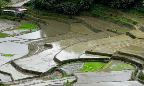 FILIPINY / Północny Luzon / Duclingan / Lustereczka