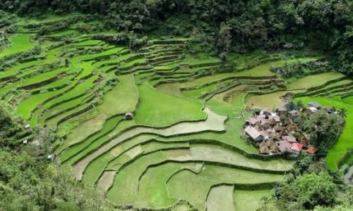 Zdjecie FILIPINY / Północny Luzon / Bangaan / Jak z bajki