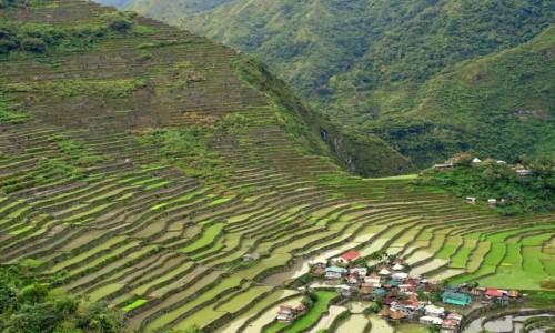 Zdjecie FILIPINY / Północny Luzon / Batad / Góra ujarzmiona