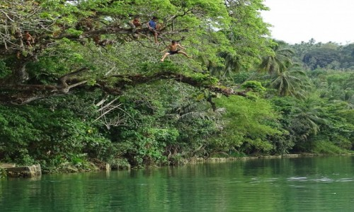 Zdjecie FILIPINY / wyspa Bohol / Bohol / Z zieloności w zieloną toń