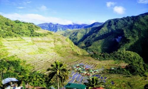 Zdjecie FILIPINY / Ifugao / Batad / Tarasy ryżowe