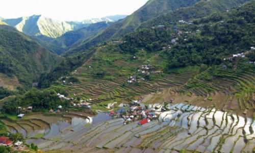Zdjecie FILIPINY / Banaue / Batad / Tarasy ryżowe - amfiteatr w Batad