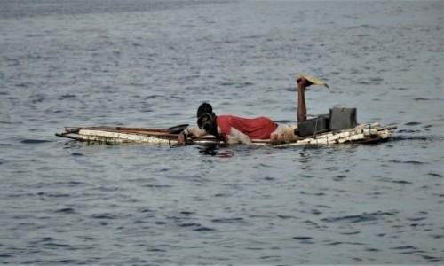 Zdjecie FILIPINY / Palawan / Turda / Octopus