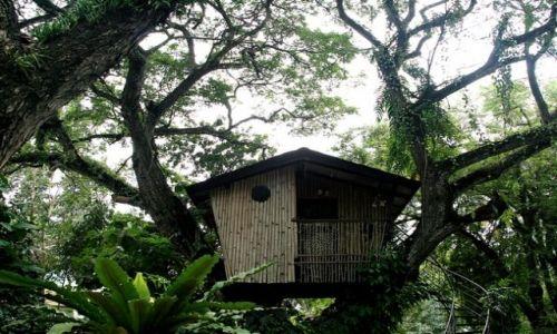 Zdjecie FILIPINY / brak / Zamboanga/Mindanao / Domek na Drzewie