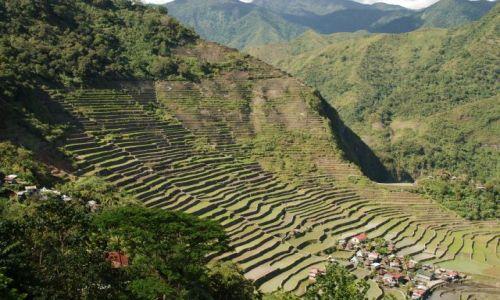 Zdjęcie FILIPINY / Illocos / Batad / Tarasy ryżowe