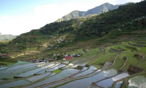 Zdjecie FILIPINY / Illocos / Batad / wioska Batad