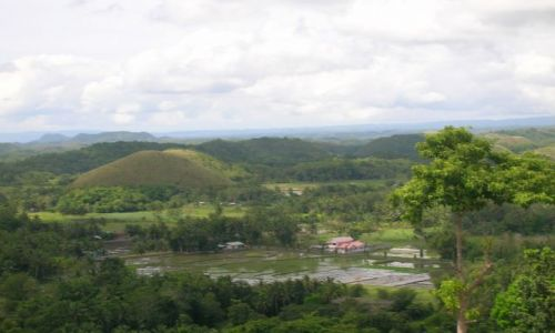 Zdjecie FILIPINY / Bohol / Chocolate Hills / Chocolate Hills