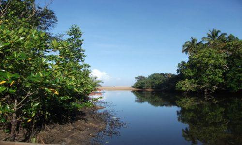 Zdjęcie FILIPINY / Palawan / Sabang i okolice /  ... ujście ...