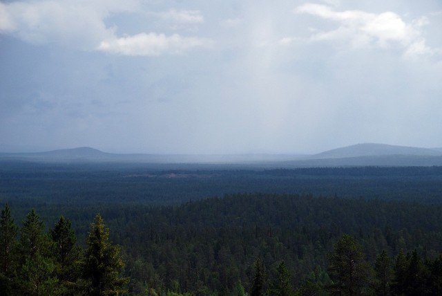 Zdjęcia: Pyha-Luosto, Laponia, Lapońska tajga, FINLANDIA