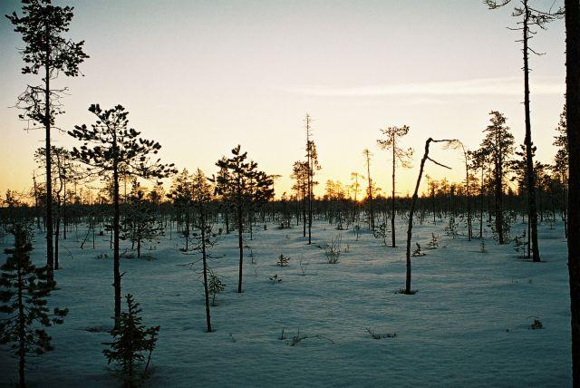 Zdjęcia: Okolica Rovaniemi, LAPLAND, FIŃSKIE KLIMATY, FINLANDIA