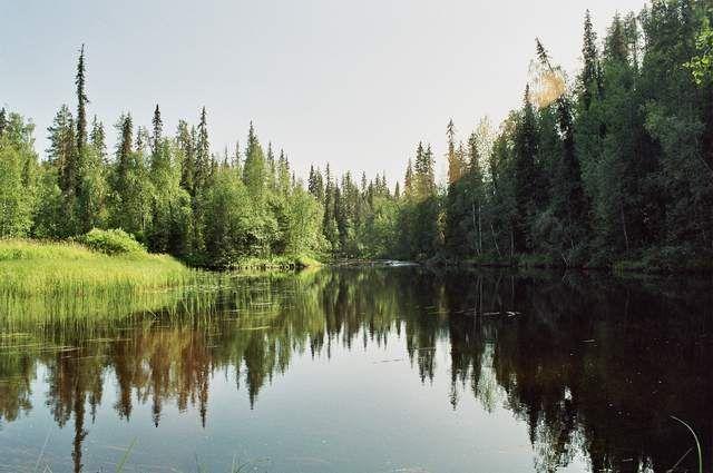Zdjęcia: Park Narodowy Oulanka, Serce Oulanki, FINLANDIA